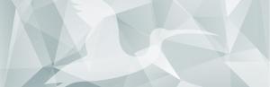 IbisSoft Visualiserar, utvecklar och förverkligar idéer