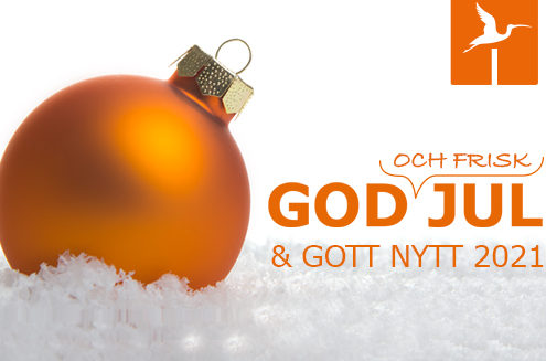 God och Frisk Jul- och Nyårshelg önska IbisSoft